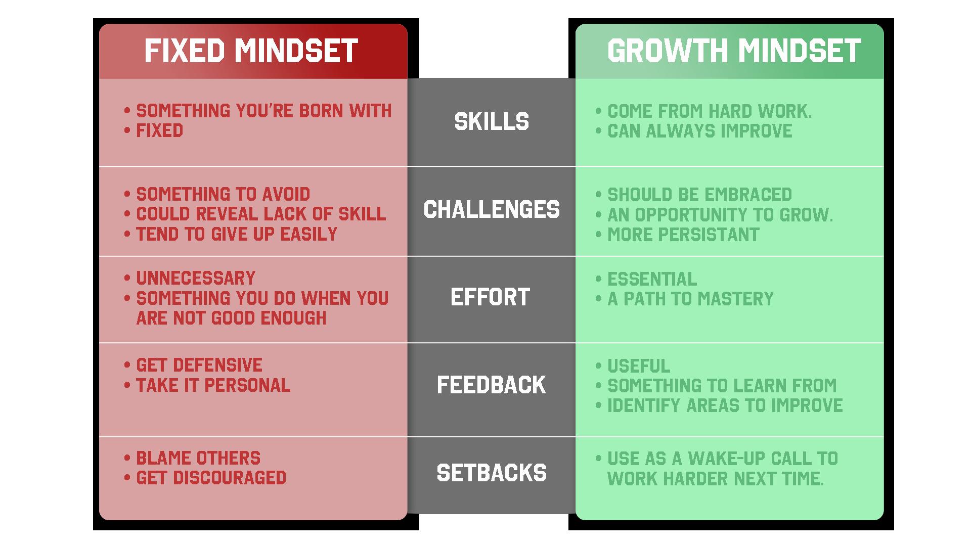 Carol Dweck Mindset -The New Psychology of Success