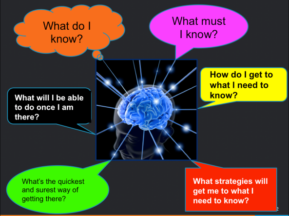 Fact Sheet: Metacognitive Processes   Teaching Excellence in Adult Literacy (TEAL)